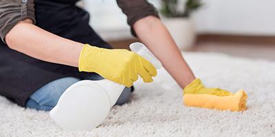 Teppichreinigung-Aufmacher
